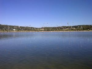 Plett Lagoon Bliss