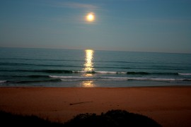 Our Beach. Our Sanctuary