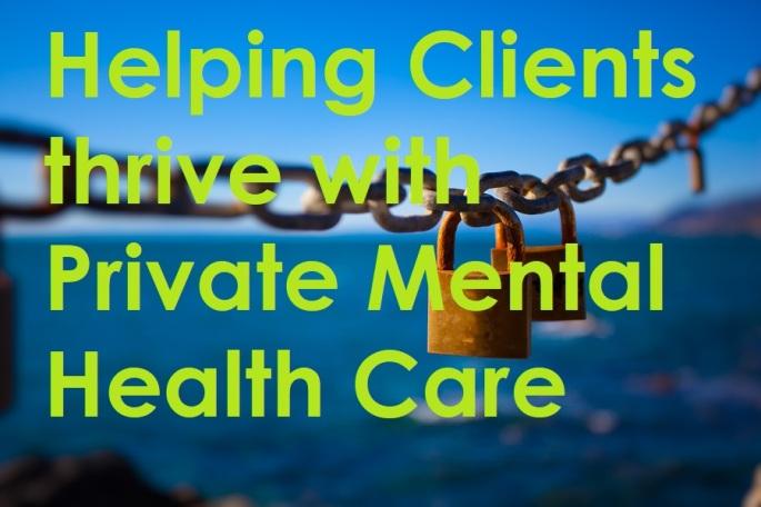 Bridging the mental health gap